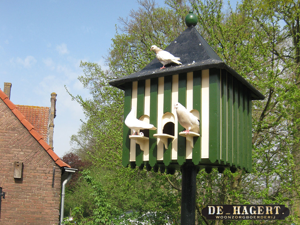 duiventil-op-de-hagert