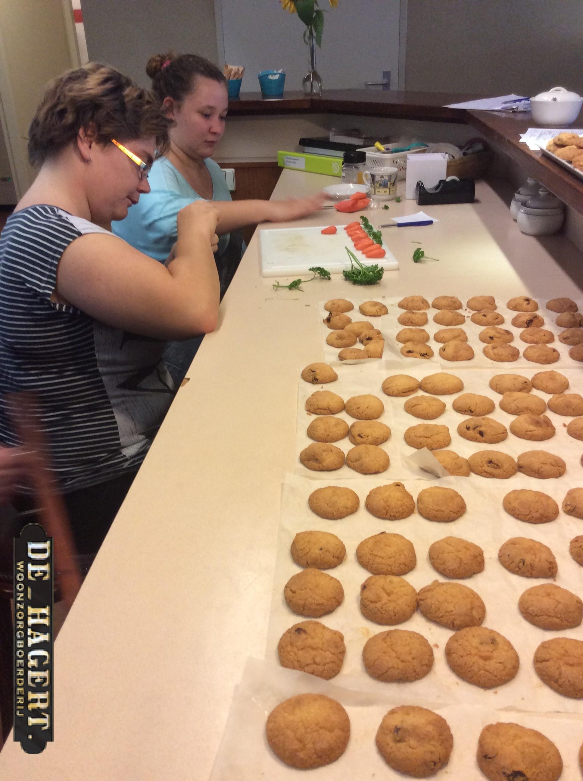 koekebakkers van de Hagert